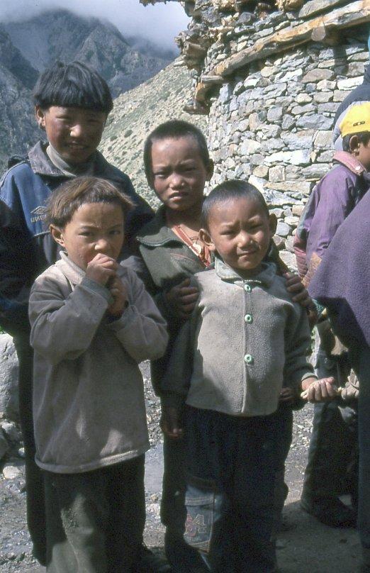 Limi kids