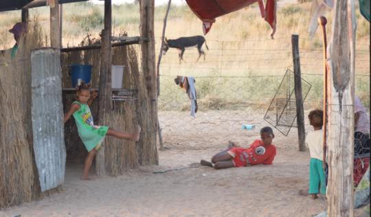 Bushman community