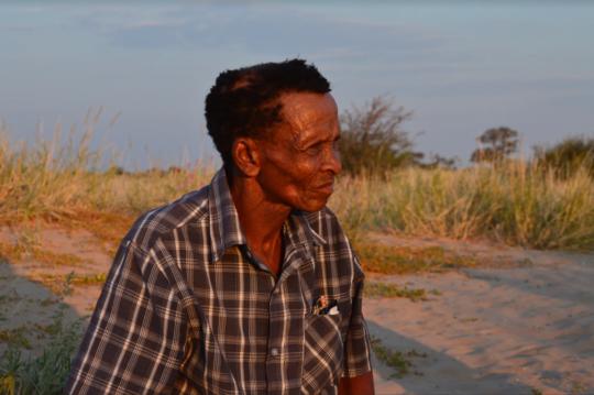 Bushman Elder on the Kalahari Dunes