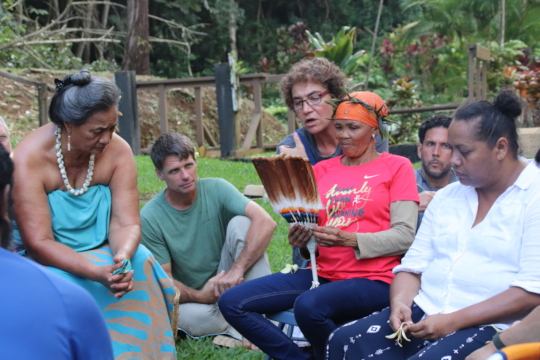 Bushman healer at Council meeting