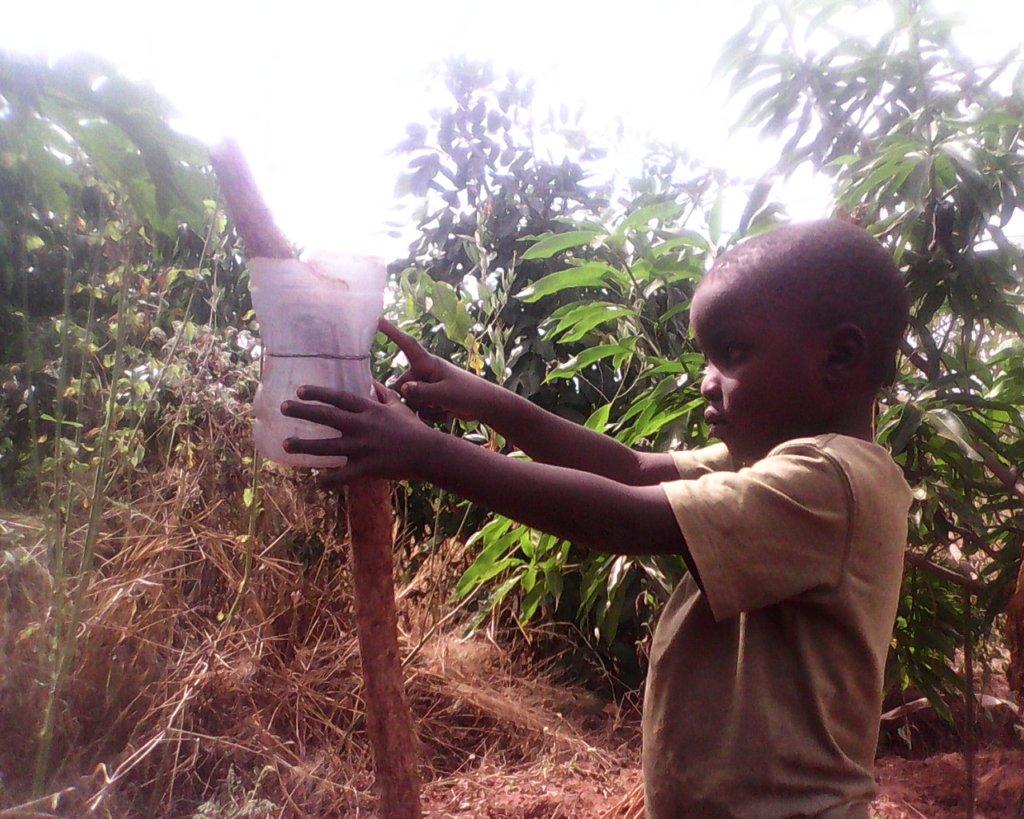 Children Scientists Restoring Chinseu Forests