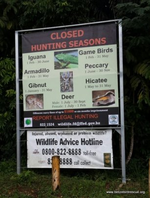 Anti-hunting banner donated by BBR to Forest Dept