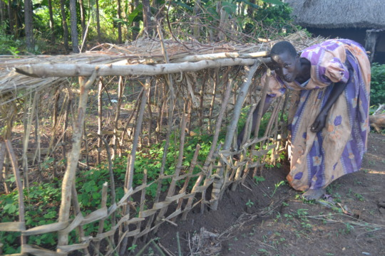 A farmer learns to protect and grow her seedlings