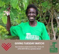 Help farmers plant green walls in Uganda!
