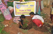 Support to plant 500 trees in schools