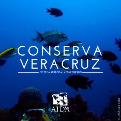 Protect Veracruz Reef System