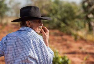 Edmondo Alves, farmer, at the planting site