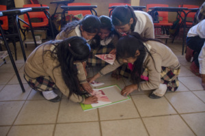Girls learning about sexual reproduction