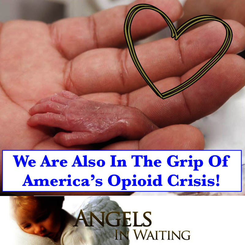 Foster Care Opioid Exposed Preemies Need Our Help!