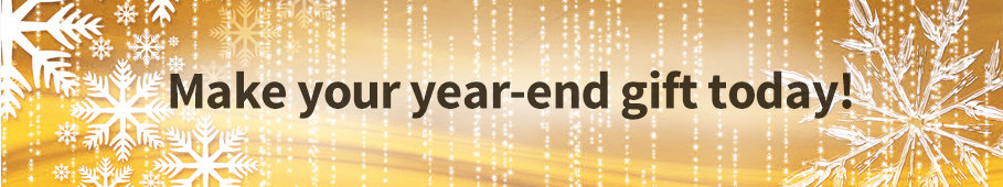 2016 Year End Tax Campaign