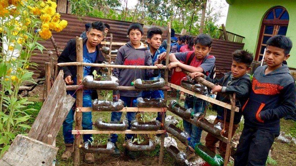 organic bottle vegetable garden
