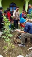 Organic Bottle Vegetable Garden instruction