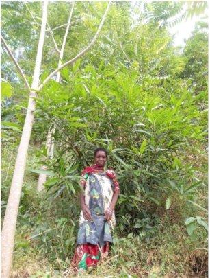 Bi on her tree farm in Ruvuma