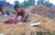 Rescue 10 Child Laborers from Brick Kilns in Nepal