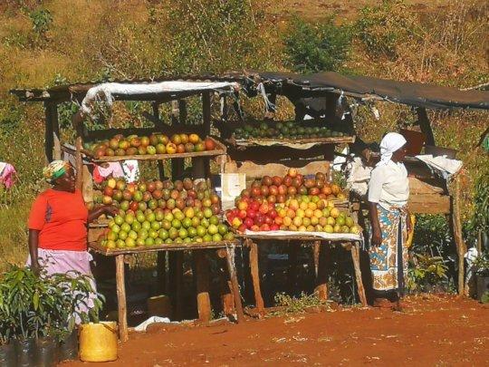 Fruit stall by local women of Kenya