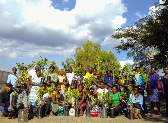 Permaculture training at our training facilities