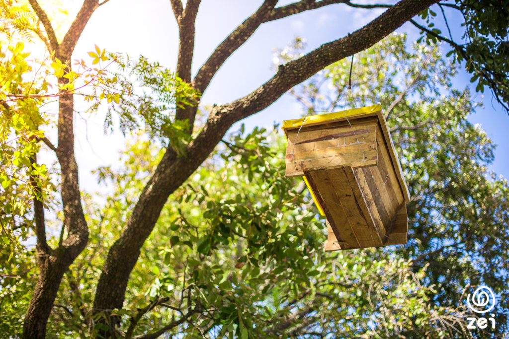 4 beehives will increase a family