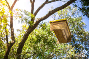 4 beehives will increase a family's income by 27%
