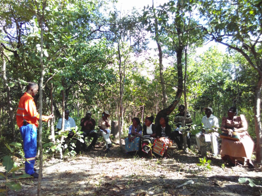 Practical training in ANR under the forest canopy