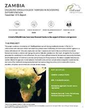 Zambia planting report (PDF)