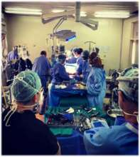The Operating Room Team