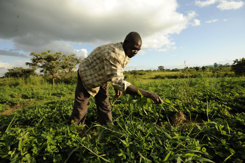 Agriculture Finance: Invest in Farmers Worldwide