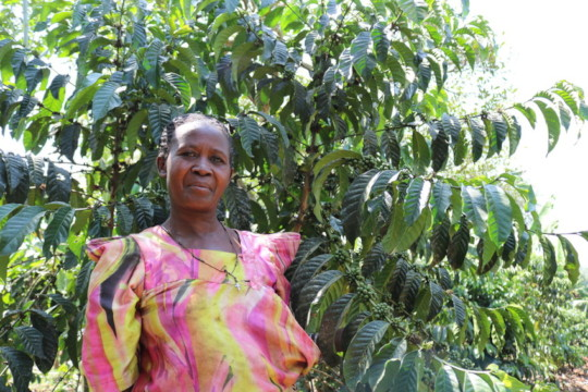 Millie, Farmer, Uganda