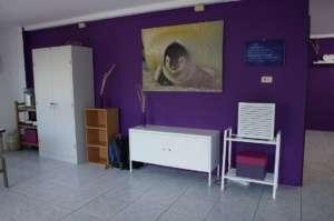 Renovation Card Room