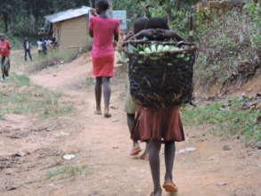 Little girl carry a basket of banana