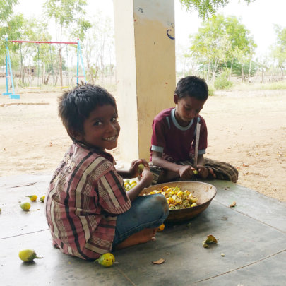 DSH children cutting fruits from the farm