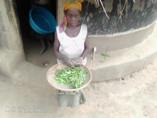 This farmer prepares wild plants found in the bush