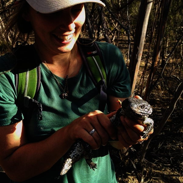 Hayley with shingle-backed lizard
