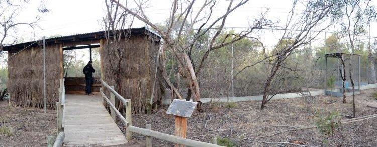 Little Desert Nature Lodge Mallee Fowl Aviary