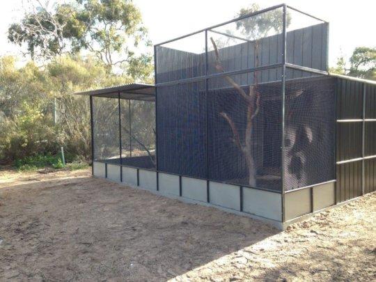 Rewilding Project Aviary