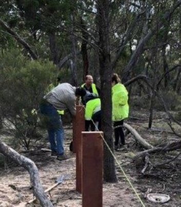 Rewilding Project Volunteers Assisting