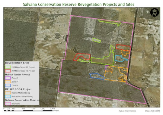 Salvana revegetation overview map
