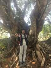 Another amazing tree hidden gem