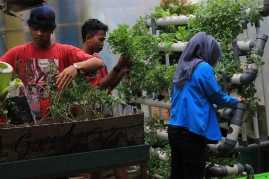 Gardening team and their hydroponic garden
