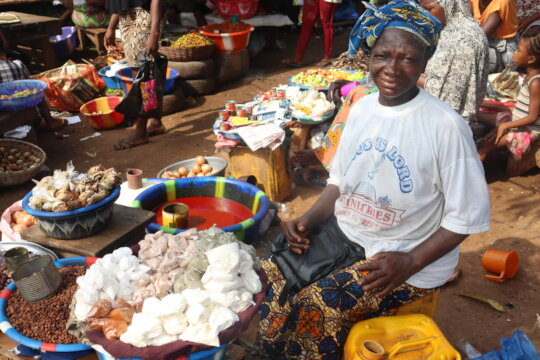 Empower Small Businesses Through Microfinance
