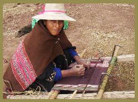 Bolivian weaver