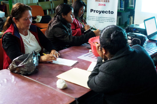 Women strategic planning with local government