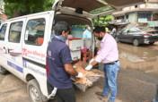 Animal Care on Wheels