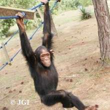 Lemba doing her exercises