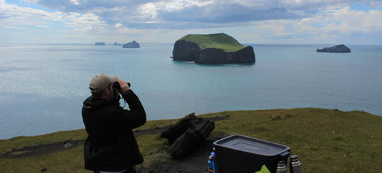 A volunteer collects observational data from land
