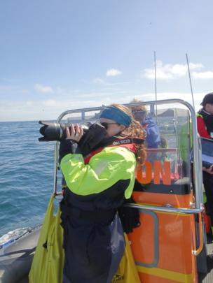 A volunteer takes photos for whale identification