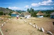 Feed Starving Girls in Zimbabwe
