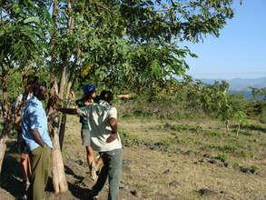 Future site of the organic farm on Mfangano Island