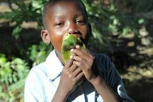 The real way to eat papaya...