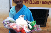 Provide food groceries to Neglected elders