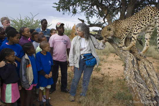 Cheetah education classes